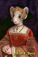 Jane Mouse Seymour by Alan F. Beck